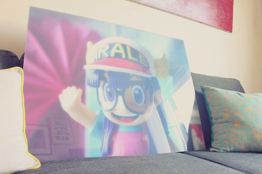 zor-impression-photo-4-arale-norimaki