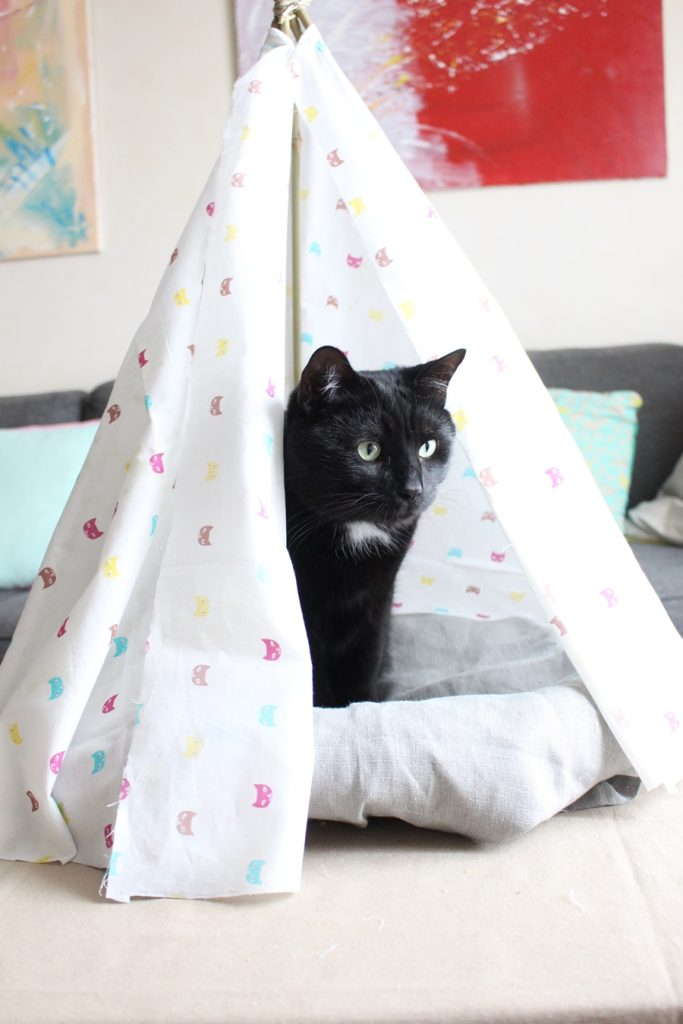 tipi-chat-diy-22