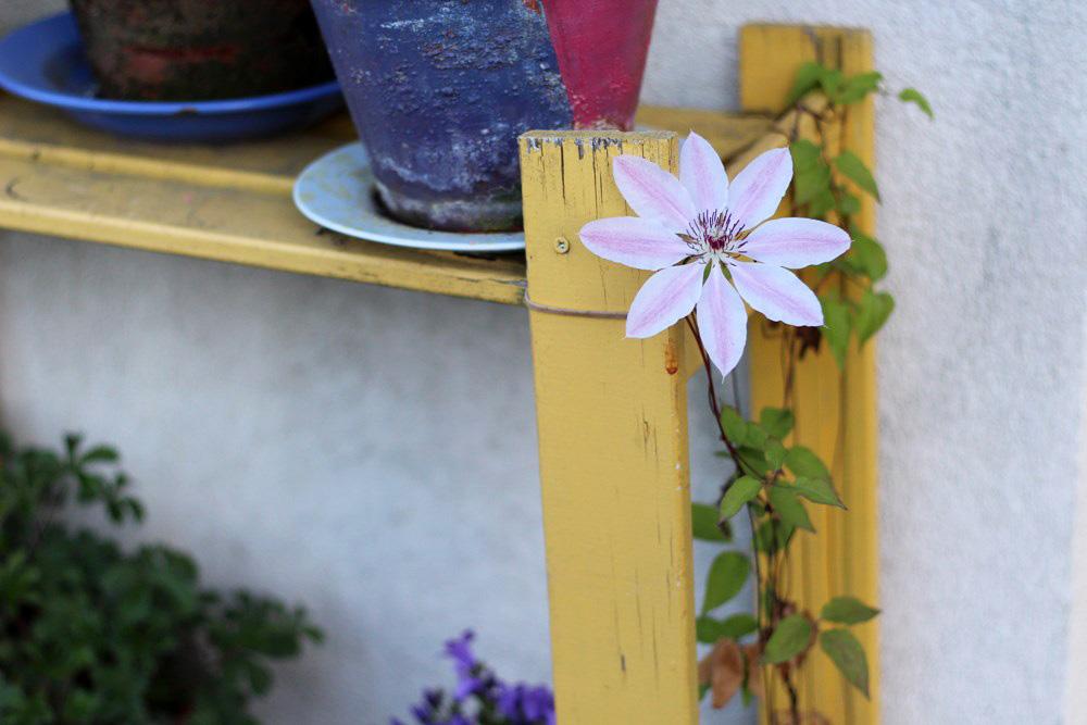 silence-ca-pousse-jardin-naturel-balcon-5-4