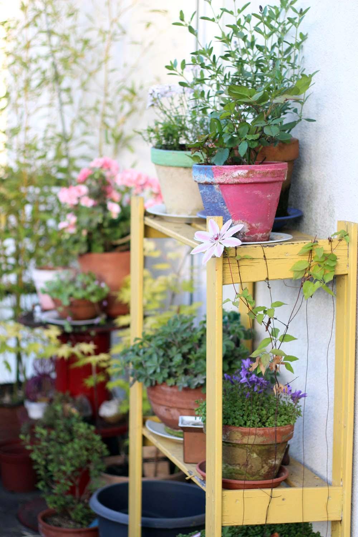 silence-ca-pousse-jardin-naturel-balcon-5-42