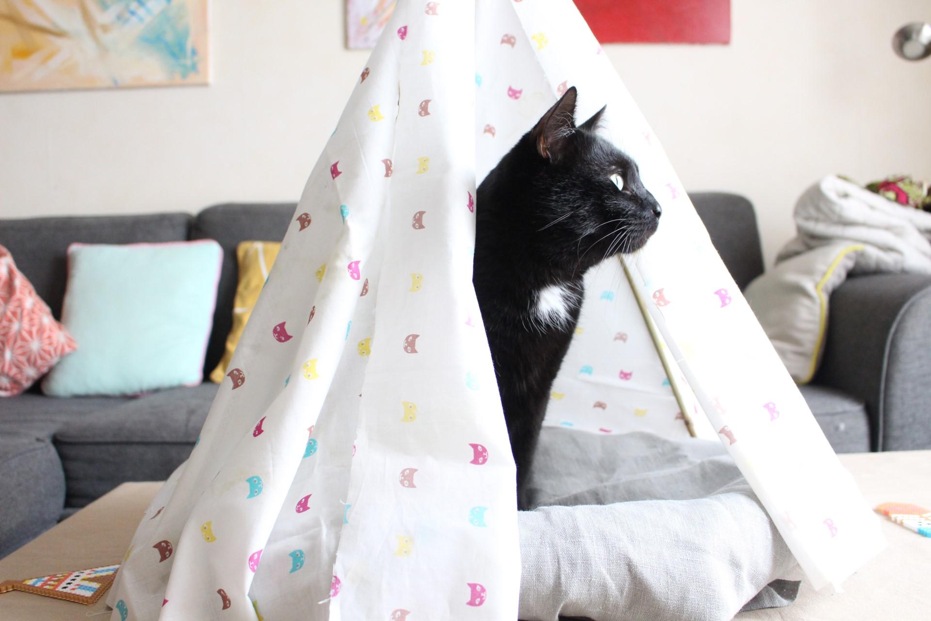 Tipi Pour Chat A Fabriquer tendancescréatives : créations pour chiens et chats !